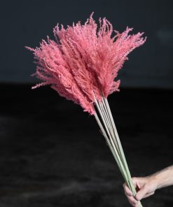 Fluffy Pampas Medium - Dusty Pink